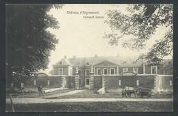 +++ CPA - Château D' AIGREMONT    // - Flémalle