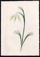 C2062 - TOP Handmade Glückwunschkarte - Blume Pflanze - Handgestickt Gestickt - Klappkarte - Holidays & Celebrations