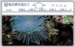= TAIWAN -  D 4053  =  MY COLLECTION - Taiwan (Formosa)