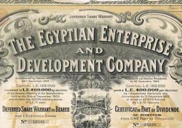 The Egyptian Enterprise And Development Companycp 19 Att - Industrie