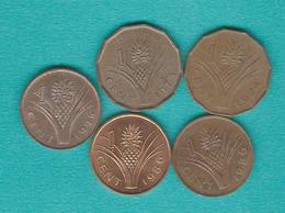 Swaziland - 1 Cent - 1974 (KM7); 1975 (KM21); 1986 (KM39 & KM39a - Magnetic & Non-magnetic); 1995 (KM51 - Magnetic) - Swaziland