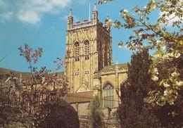 Postcard Malvern Priory Church From Priory Park My Ref  B23353 - Worcestershire