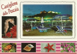 Castiglione Della Pescaia (Grosseto) Vedute: Spiaggia Notturno, Stella Marina, Conchiglia, Grancio, Cavalluccio Marino - Grosseto