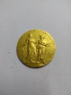 Médaille En Or 18k , Ministère De L'Agriculture 1913  , 23.88G - Francia