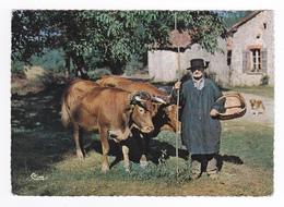 Paysan Limousin N°9511 Costume Sabots Beaux Boeufs Avec Joug Chien Postée à Ussel En 1968 - Ussel