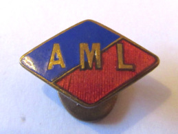 Insigne Boutonnière à Identifier - Sigle AML / A.M.L - Métal Doré Et émail - TBE - Autres