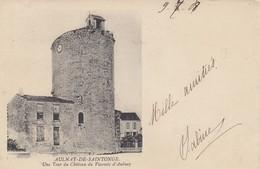 17 - Aulnay-de-Saintonge - Une Tour Du Château Du Vicomte D'Aulnay - Aulnay