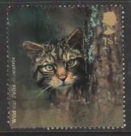 GB 2004 Woodland Animals 1st Sg:GB 2483 O Used - 1952-.... (Elizabeth II)
