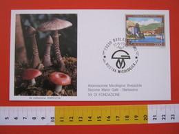 A.06 ITALIA ANNULLO - 1987 BARLASSINA MILANO MOSTRA MICOLOGICA FUNGO FUNGHI LOGO ASSOCIAZIONE 20 ANNI - Mushrooms