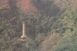1 AK China * Pagode Im Park Des Duftenden Berges - Fragrance Hill Park * - Chine