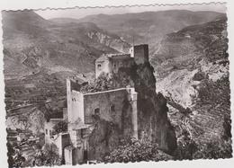DAV :   Alpes De Haute Provence :  ENTREVAUX : Vue Le  Fort  Vauban - Other Municipalities
