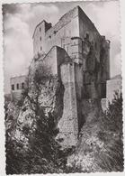 DAV :   Alpes De Haute Provence :  ENTREVAUX : Vue La  Citadelle  Vauban - France