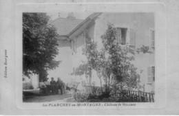 CPA De Planches-en-Montagne - Chateau De MOLIBOZ. Edition Bourgeois. Couleur Bistre. Circulée. Bon état - Autres Communes