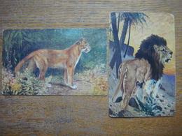 Lot De 2 Vieilles Cartes Avec LION LIONNE - Leeuw Leeuwin - Lion Lioness - Lions