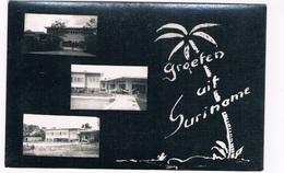 SUR-62   SURINAME : Groeten Uit - Surinam