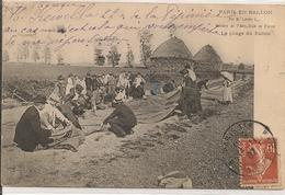 LOT - De 10 Cartes Postales - Postcards