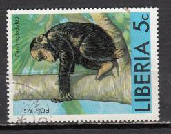 LIBERIA ° YT N° 720 CHIMPANZE - Liberia