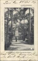 Cp Rio Branco Brasilien, Praca Visconde, Platz, Statue, Palmen - Autres