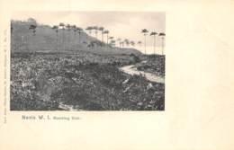 Nevis / 02 - Morning Star - Antilles