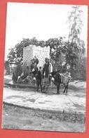 Tunisie -  TOZEUR - Fontaine Et Animation - Photo Originale Imp J.COMBIER Pour éditer Les Cartes Postales -datée 1954 - Afrique