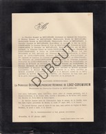 Doodsbrief Princesse Octavie Alphonsine Hermine De Looz-Corswarem °1832 Bossut-Gottechain †1897 Ixelles / Bonlez (L70) - Obituary Notices