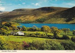Postcard Ennerdale Water Cumbria [ John Hinde ] My Ref  B23369 - Cumberland/ Westmorland
