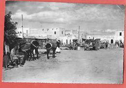 Tunisie -  TOZEUR  Marché,animation-photo Originale Imp J.COMBIER Pour éditer Les Cartes Postales -datée 1954 - Afrique