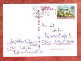 P 493 Burg Grein, MS Zell Am See, Nach Salzburg 1991 (68955) - Entiers Postaux