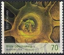 Allemagne 2015 Oblitéré Rond Used Blüte Odermennig Aigremoine Des Fleurs SU - [7] Federal Republic