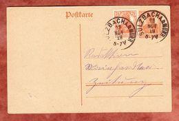P 110 + Farbgleiche ZF Germania, Entwertet Sulzbach 1919 (68960) - Germany