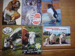 Lot 12  Cartes ANIMAUX HUMORISTIQUES ( Humour Animal - Dierlijke Humor - Animal Humor ) - Dieren