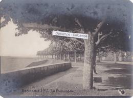SUISSE HERMANCE 1917 - Photo Originale De La Promenade Au Bord Du Lac - Places