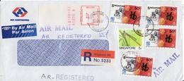 Lettre Avion - Recommandée - 1987 - Calligraphie - Libellule - - Singapour (1959-...)
