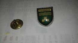 Pin S Blason D Evionnaz - Villes