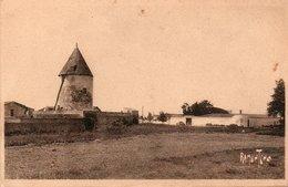 17 Ile De Ré  -  LOIX      Moulin à Vent - Ile De Ré