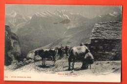 TRN-21 Abend Auf Der Alp. Kuhherde. Belebt. Pionier. Nicht Gelaufen. Verlag Photoglob - Suisse
