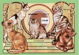Lote 2066, Nicaragua, 1994, HF, SS, Gatos. Domestic Cat - Nicaragua