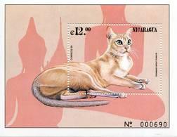Lote 2323, Nicaragua, 1999, HF, SS, Gato. Birmania, Burmese, Cat - Nicaragua
