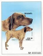 Lote 2322, Nicaragua, 1999, HF, SS, Perro, France, Braque Du Bourbonnais, Dog, Francia - Nicaragua