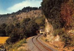 CPM - Grottes De HAN-sur-LESSE - Tram Panoramique Aux Pieds Des Rochers De Faule - Rochefort