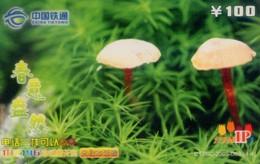 China Tietong Prepaid Cards, Mushroom,   Changchun City, Jilin Province,(1pcs) - Flowers