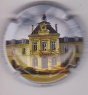 Capsule Champagne RILLY LA MONTAGNE ( 72e , La Mairie ) {S04-19} . - Champagne