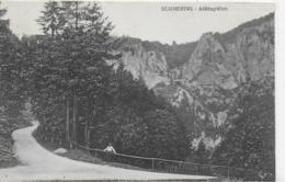 AK 0136  Semmering - Adlitzgraben / Verlag Schmelzer Ca. Um 1910 - Semmering