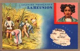 30 Chromos Colonies Françaises Carte Map Pub - Cirage Lion Noir -  Dos Didactique - Bill-859  - R/V - Chromos