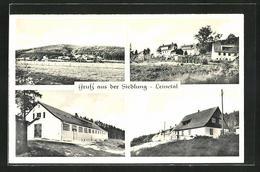 AK Kreiensen-Siedlung Leinetal, Ortsansicht, Teilansicht, Ortspartien - Ohne Zuordnung