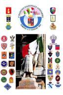 [MD2611] CPM - 3° RADUNO NAZIONALE ASSOARMA - TORINO - CON ANNULLO 2.7.2011- Non Viaggiata - Patrióticos
