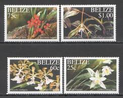 E481 BELIZE NATURE FLORA FLOWERS CHRISTMAS 2001 #1250-53 SET MNH - Plants