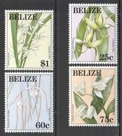 E483 BELIZE NATURE FLORA FLOWERS CHRISTMAS 1994 #1130-33 SET MNH - Plants