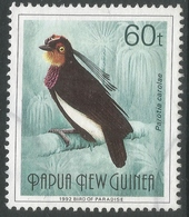 Papua New Guinea. 1991 Birds Of Paradise. 60t Used. SG645 - Papua New Guinea
