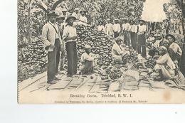 Amerique Antilles Breaking Cocoa Trinidad B.W.I. - Trinidad
